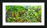 The Greenhouse Picture Frame print