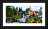 Tumwater Falls Picture Frame print