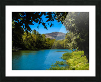 Through the trees Picture Frame print