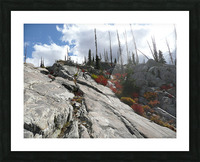 Easy Climb to Grouse Mountain Picture Frame print
