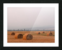 Haybales in a Haze Picture Frame print