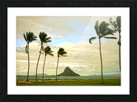 The Island of Mokoli  i from Oahu at Sunset Picture Frame print