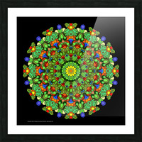 Mandala 2028 Picture Frame print