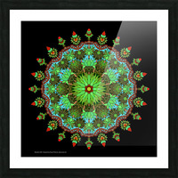 Mandala 2005 Picture Frame print