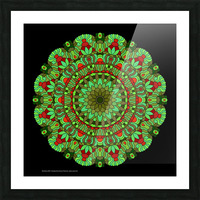 Mandala 2002 Picture Frame print