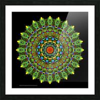 Mandala 2014 Picture Frame print