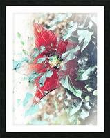 Scarlett Pimpernel with Vine Picture Frame print