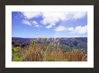 Beautiful View in Waimea Canyon on the Island of Kauai Picture Frame print