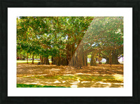 Waikiki Snapshot in Time 4 of 4 Picture Frame print
