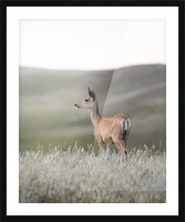 Happy Hour on the Prairie Picture Frame print