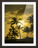 Palms and Hulu Thatched Tiki Umbrellas in the Golden Light of Sunset Picture Frame print