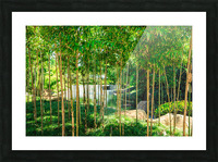 Bamboo Picture Frame print
