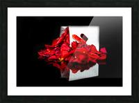 Rose Petals Picture Frame print