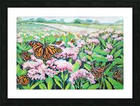 CountyMonrachButterflies Picture Frame print