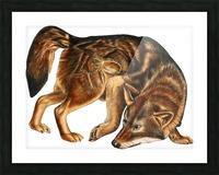 Fox Print | British Wildlife Art | A3 A4 A5 | Fox Lover Gift | Fox Illustration | Fox Painting | Fox Nursery Wall Art | British Animal Print Picture Frame print
