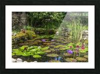 Divin Jardin d   eau   Divine Water Garden Impression et Cadre photo