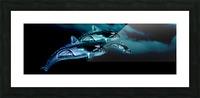 ORCAS LUNARES WIDE 8 Picture Frame print