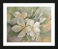 Plumeria  Picture Frame print