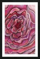 Petals Impression et Cadre photo
