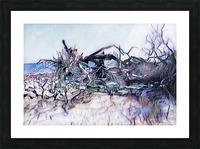 Driftwood Beach Picture Frame print