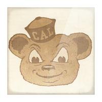 1966 Cal Bear Art | Row 1 Picture Frame print