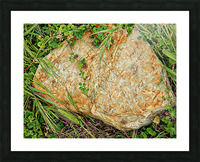 Brown Sandstone Rock With Grass Picture Frame print