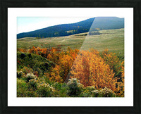 LS028 Picture Frame print