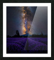 Lavender Valley Picture Frame print