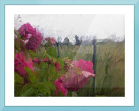 Seeing What Monet Saw Picture Frame print