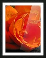 Passion Flower Impression et Cadre photo