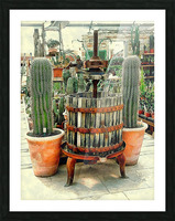 Old Wine Press Used in Succulent Display Picture Frame print