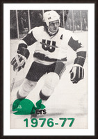 1976 New England Whalers Art Picture Frame print