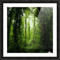 Pure oxygen  Picture Frame print