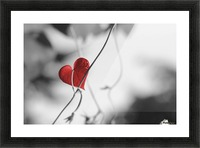 Red heart shaped leaf Picture Frame print