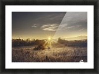 Zen morning Picture Frame print