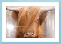 Highland Harry Picture Frame print