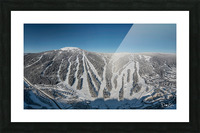Groomer s Choice Picture Frame print