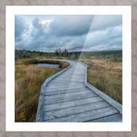 Autumn Walk - 2 Picture Frame print