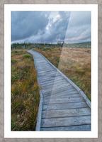 Autumn Walk Picture Frame print