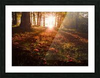 Autumn Sunrise Picture Frame print