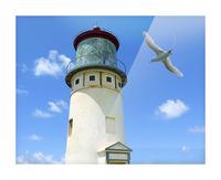 Kilauea Lighthouse and Wildlife Refuge on Kauai Picture Frame print