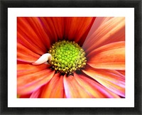 Colorful Picture Frame print