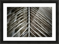 Nature - 16 Picture Frame print