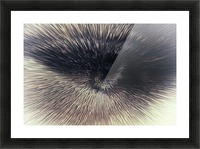 Eye on you 2 Picture Frame print