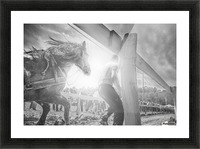 Man and horse  Picture Frame print