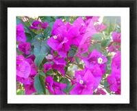 Purple Fusion Picture Frame print