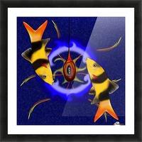 Macrachantis V1 - colourful fish Picture Frame print