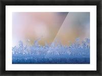 landscape_2_0126 Picture Frame print