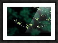 landscape_2_0163 Picture Frame print