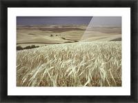 landscape_2_0600 Picture Frame print